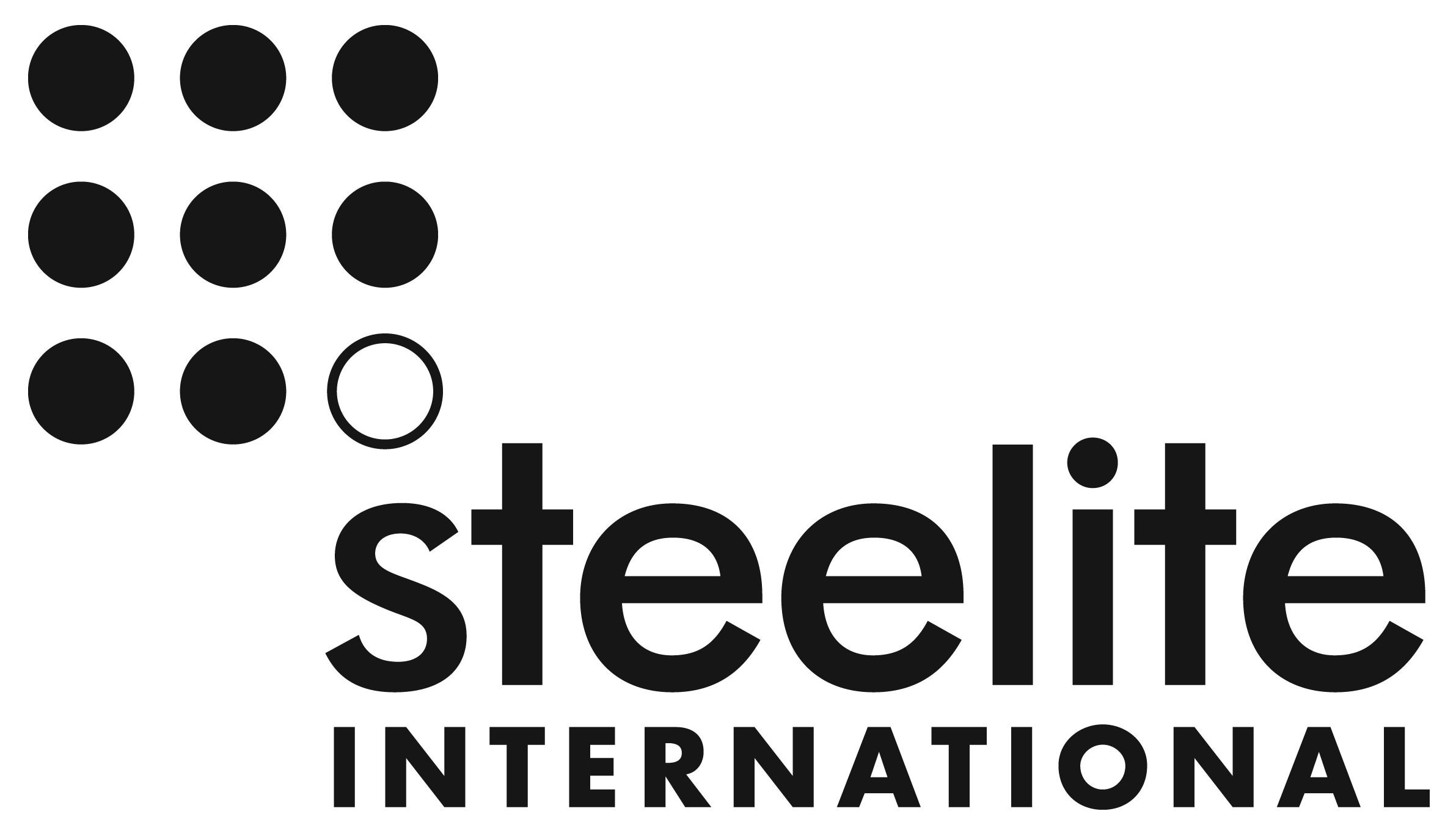 Steelite Logo Black