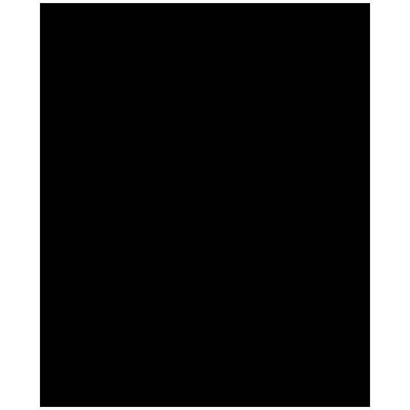BRM_2018_logo_Black_800x800